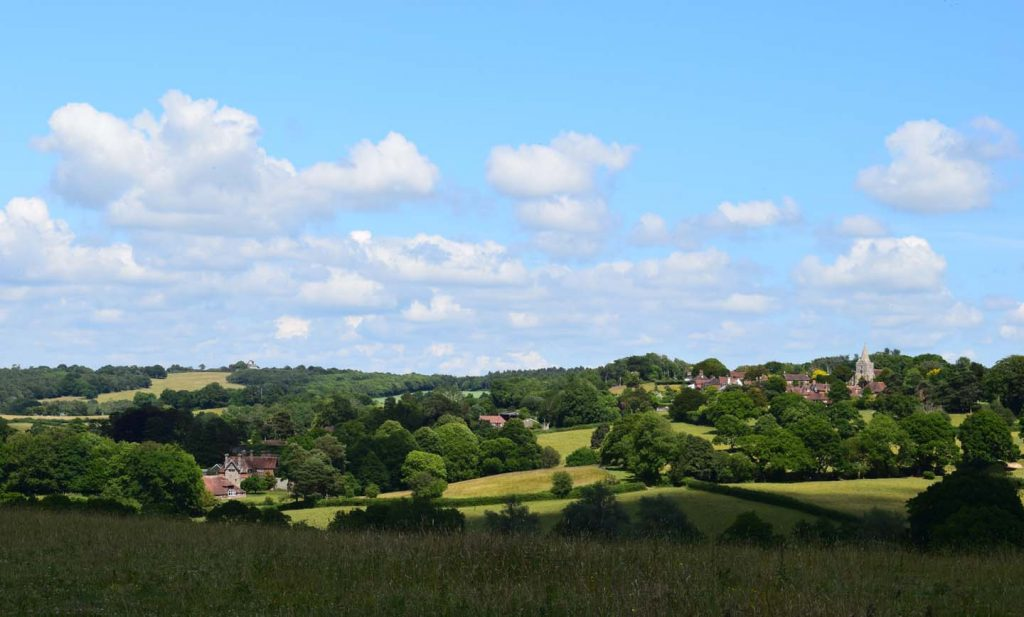 Typical Weald Landscape - Small Villages, Trees And Fields